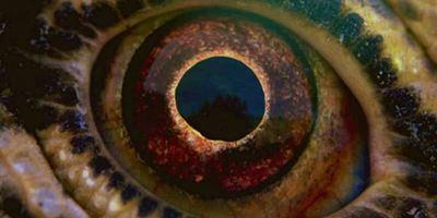 """""""Voyage Of Time: Life's Journey"""": Deutscher Trailer zur bildgewaltigen IMAX-Doku von Terrence Malick"""