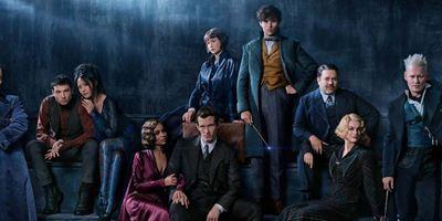 """""""Phantastische Tierwesen 3"""": J.K. Rowling arbeitet schon am Skript, hat aber nicht das letzte Wort"""