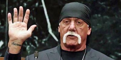 """Tribute von Panem""-Regisseur verfilmt Sex-Tape-Skandal um Hulk Hogan"