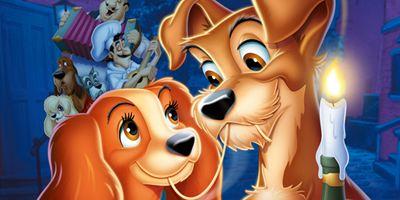 """""""Susi und Strolch"""": Zwei Marvel-Stars für Disneys Realfilm-Remake an Bord"""