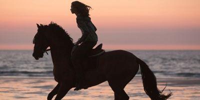 """Langer Trailer zum Pferde-Abenteuer """"Immenhof - Das Abenteuer eines Sommers"""""""