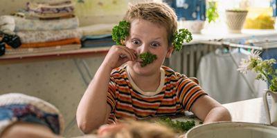 """Deutsche Kinocharts: Hollywood weiter ohne Chance gegen """"Der Junge muss an die frische Luft"""""""