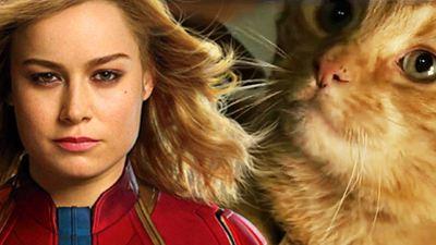 """Vor """"Avengers 4"""": Marvel startet mit neuen (Katzen-)Postern den """"Captain Marvel""""-Countdown"""