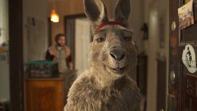 """Gerade noch auf Platz 1 der Kinocharts, jetzt schon als Stream: """"Die Känguru-Chroniken"""" bei Amazon und Co."""
