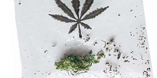 """Deutscher Kiffer-Roman """"Die Cannabis GmbH"""" wird verfilmt"""