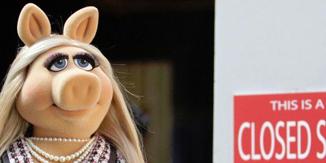 Nach Trennung des Traumpaars: Miss Piggy nennt die wahren Gründe für das Beziehungs-Aus
