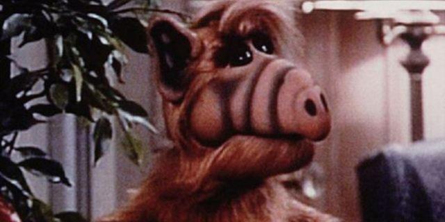 """Alf""-Schauspieler Michu Meszaros ist tot"