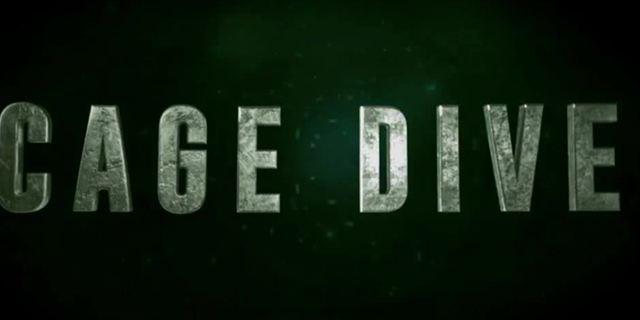 """Found-Footage-Horror mit Haien: Erster Trailer zu """"Cage Dive"""""""