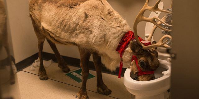 """Feiern bis das Rentier aus dem Klo trinkt im neuen Trailer zu """"Office Christmas Party"""" mit Jennifer Aniston"""