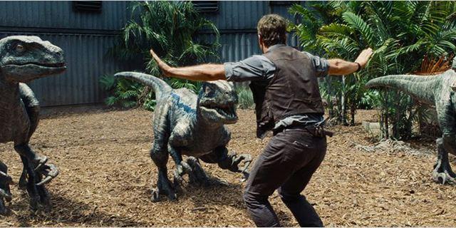 """Unterstützung für Bryce Dallas Howard: Zweite Hauptdarstellerin für """"Jurassic World 2"""" verpflichtet"""