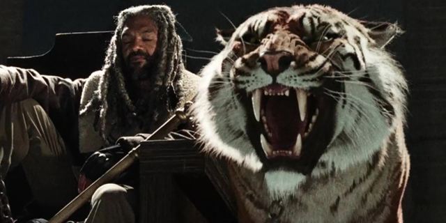 """The Walking Dead"": So sieht Tiger Shiva am Set aus"