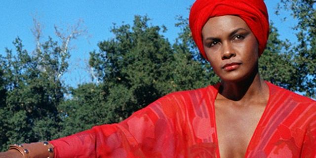 "Blaxploitation-Kult-Klassiker: Remakes von ""Superfly"" und ""Cleopatra Jones"" kommen"