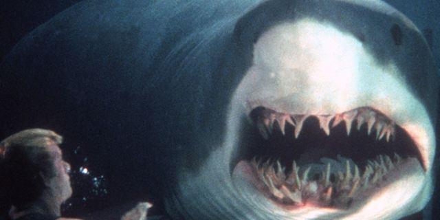 """Aufgedeckt: Spielt """"Deep Blue Sea"""" im selben Filmuniversum wie """"Der weiße Hai""""?"""