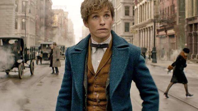 """FILMSTARTS am Set von """"Phantastische Tierwesen und wo sie zu finden sind"""": Darum freuen wir uns auf das """"Harry Potter""""-Spin-off"""