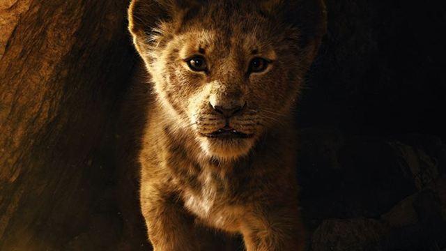 """""""Der König der Löwen"""": Dieser beliebte Song aus dem Original soll auch im Remake zu hören sein"""