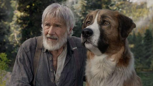"""Deutscher Trailer zu """"Ruf der Wildnis"""": Hunde-Abenteuer mit Harrison Ford (und seinem Vollbart)"""