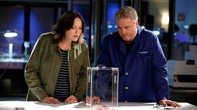 """Mega-News für """"CSI""""-Fans: Serien-Revival mit den Original-Stars in Arbeit"""