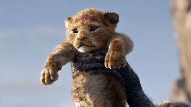 """Von Oscar-Preisträger: """"Der König der Löwen 2"""" kommt!"""
