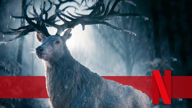 """Fantasy-Action im ersten Trailer zum Netflix-Serienhighlight """"Shadow And Bone"""": Nachschub für """"Cursed""""- und """"Witcher""""-Fans"""