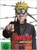 Naruto Shippuden The Movie 5: Blood Prison