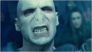 """Alternative Buch-Cover: So würde """"Harry Potter"""" aussehen, wenn Voldemort der wahre Held der Geschichte wäre!"""