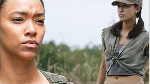 """Ein Selbstmordkommando und ein schockierender Verrat! Das sind die wichtigsten Ereignisse der neuen Folge von """"The Walking Dead""""!"""