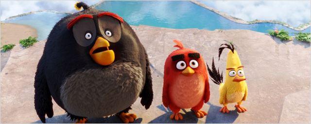 """""""Zum ersten Mal mit Flügeln und Beinen"""": Das FILMSTARTS-Interview mit """"Angry Birds""""-Produzent John Cohen"""