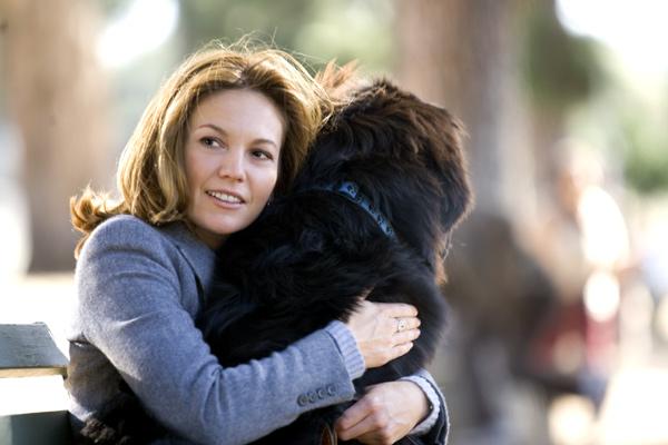 Frau mit hund sucht mann mit herz besetzung