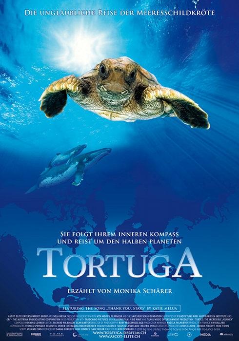 Tortuga - Die unglaubliche Reise der Meeresschildkröte - Die ...