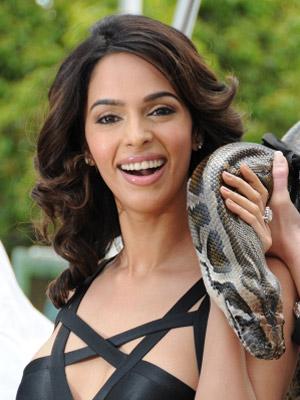 meena bei Indische Sex Videos - fan3xcom