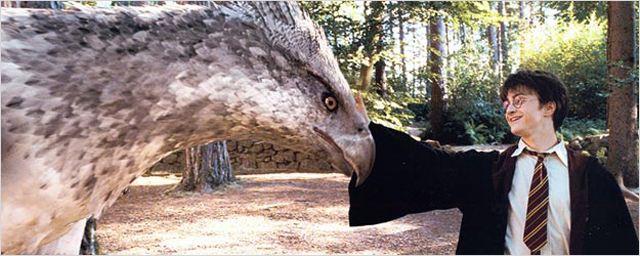 Harry Potter Magische Tierwesen Und Wo Sie Zu Finden Sind