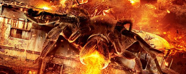 Film Mit Riesenspinnen