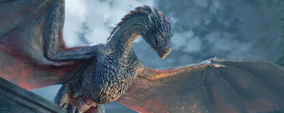 Daenerys Drachen