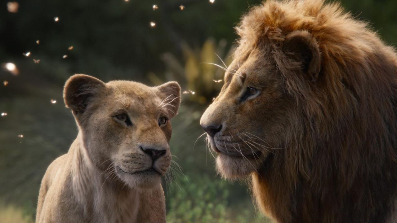 """""""der könig der löwen"""" realistischer ist eben nicht besser"""