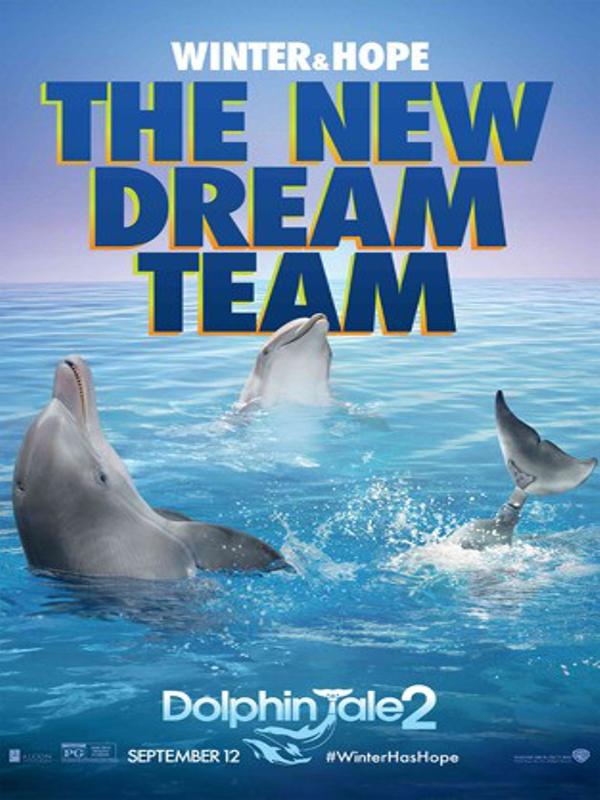 Mein Freund Der Delfin 2 Ganzer Film