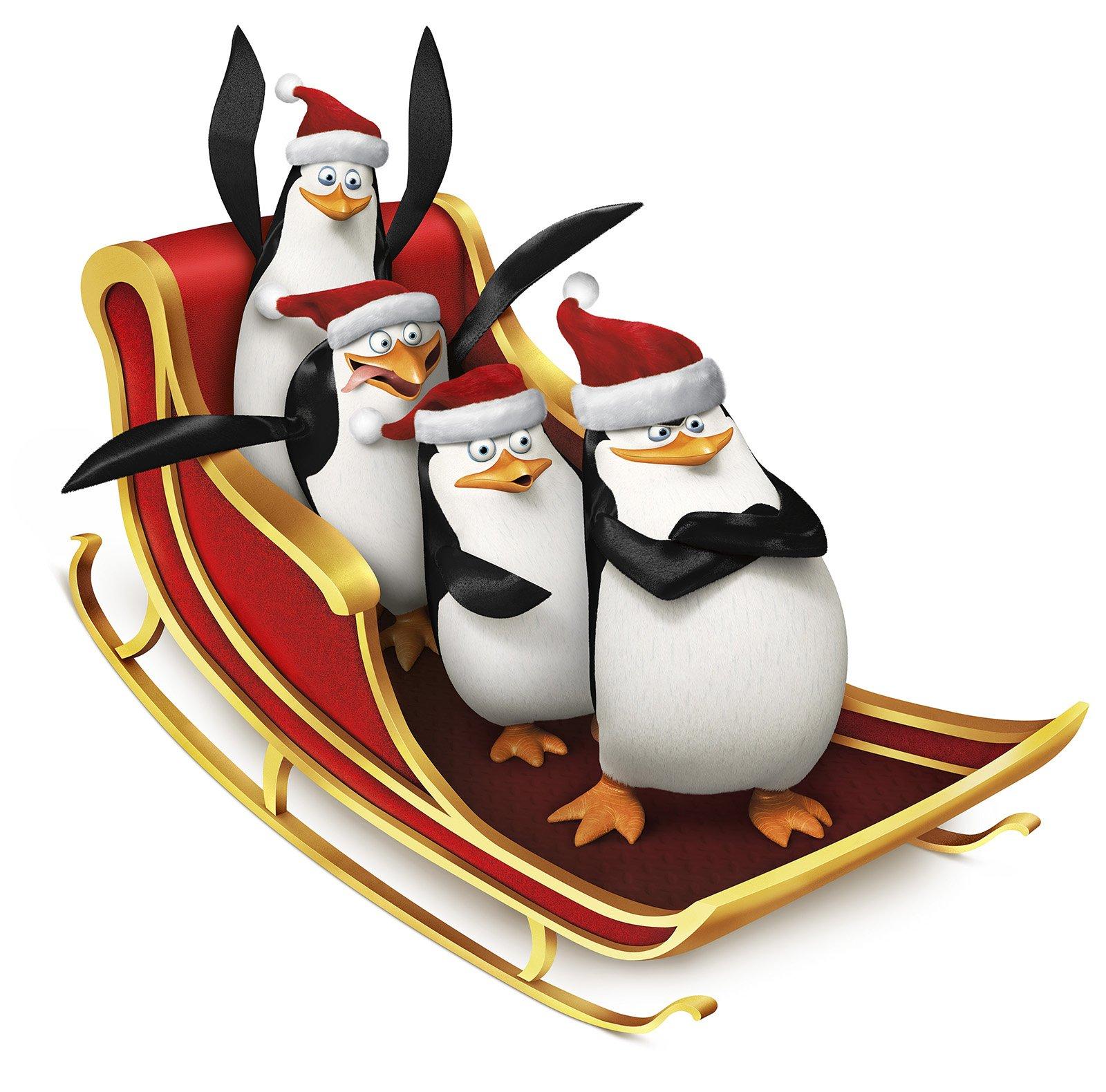 Film Die Pinguine Aus Madagascar