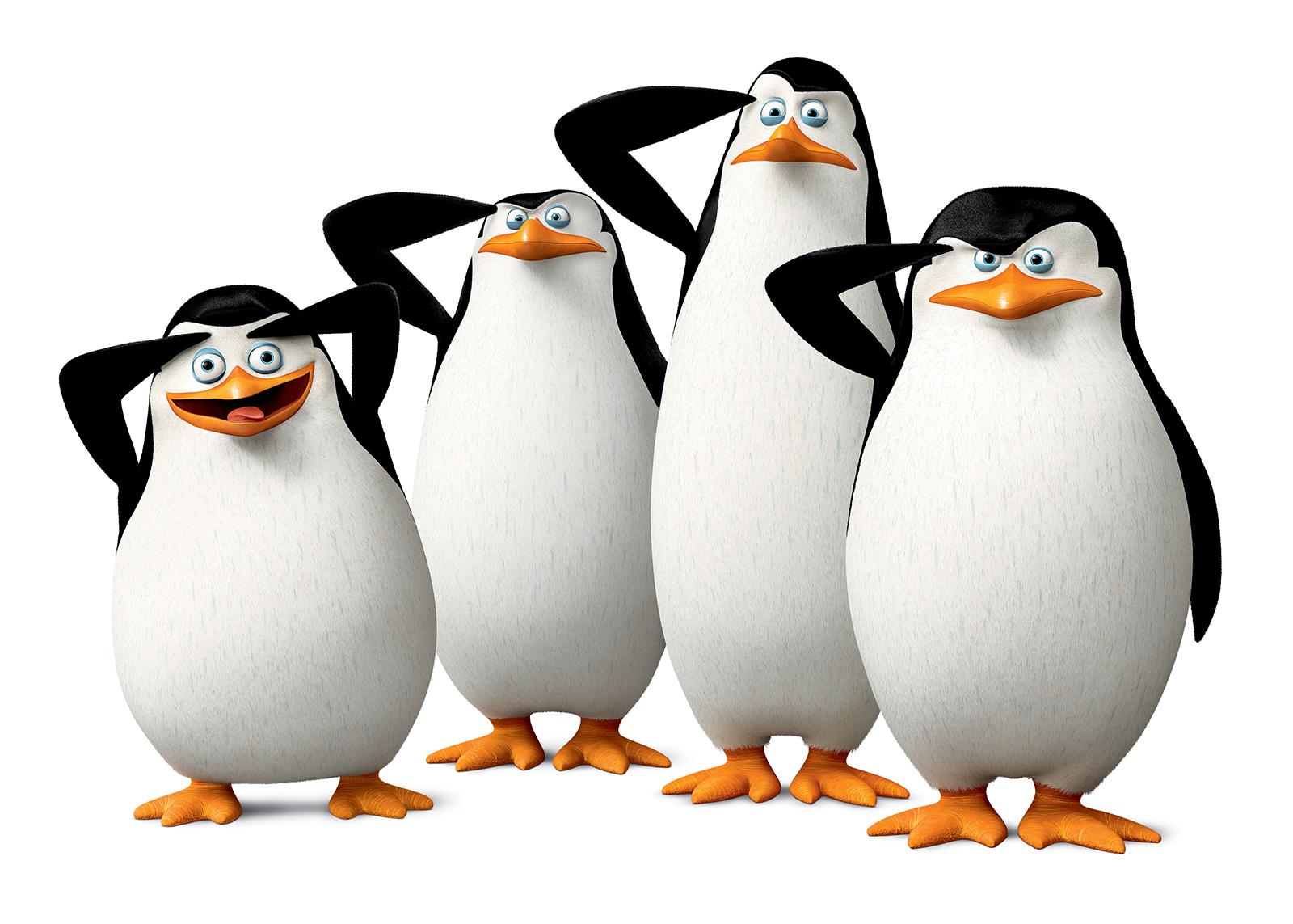 Pinguine Von Madagascar Film