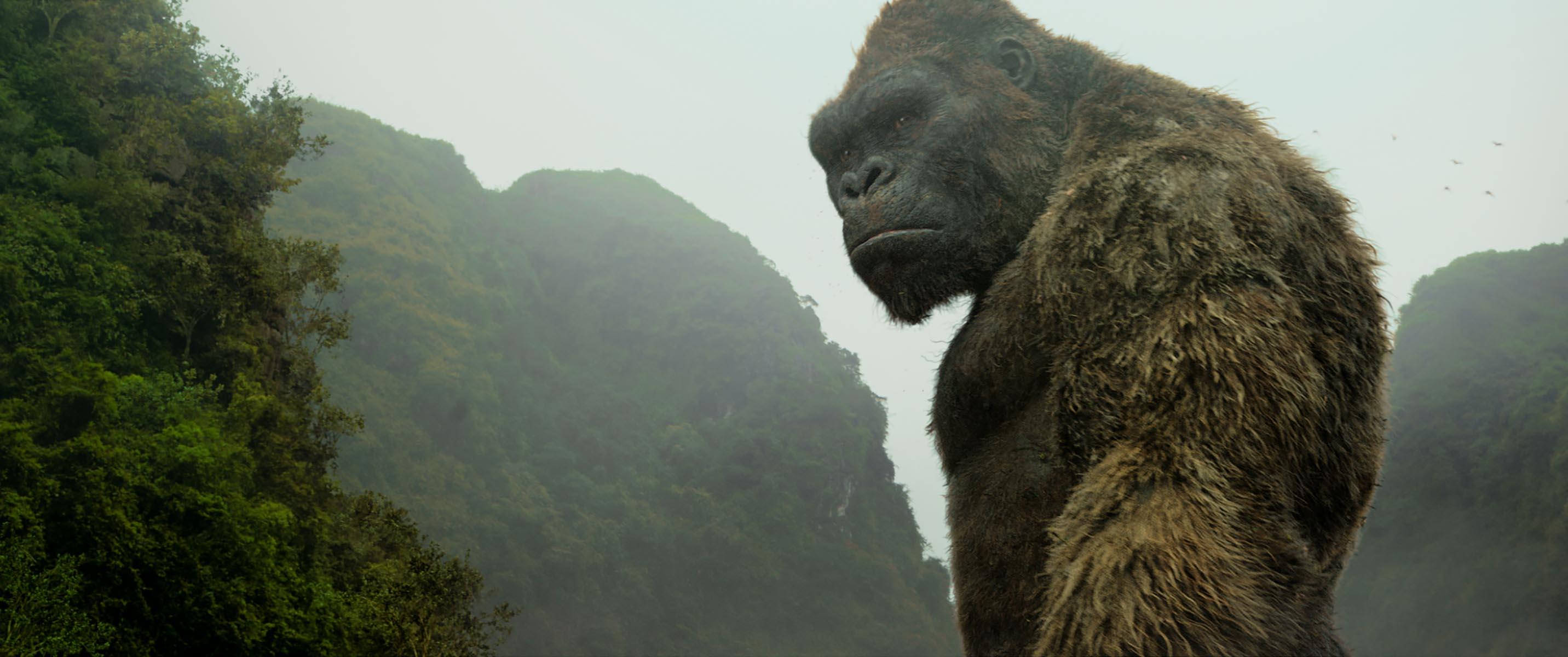 Kong: Skull Island Besetzung