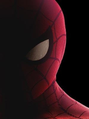 Spiderman 2021 Film