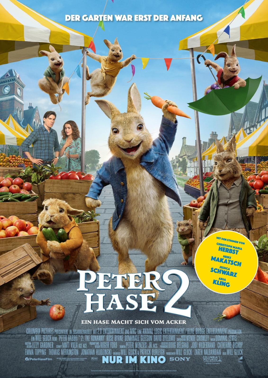 Peter Hase 2 Kino