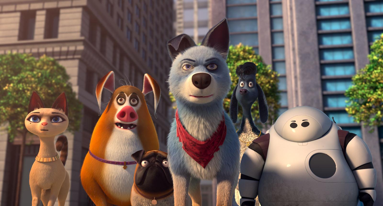 Kinoprogramm Pets