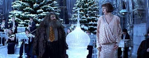 Harry Potter und der Feuerkelch : Bild Frances de la Tour, Robbie Coltrane