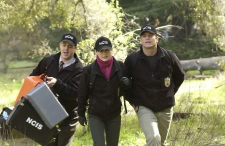 Navy CIS : Bild Michael Weatherly, Sasha Alexander, Sean Murray