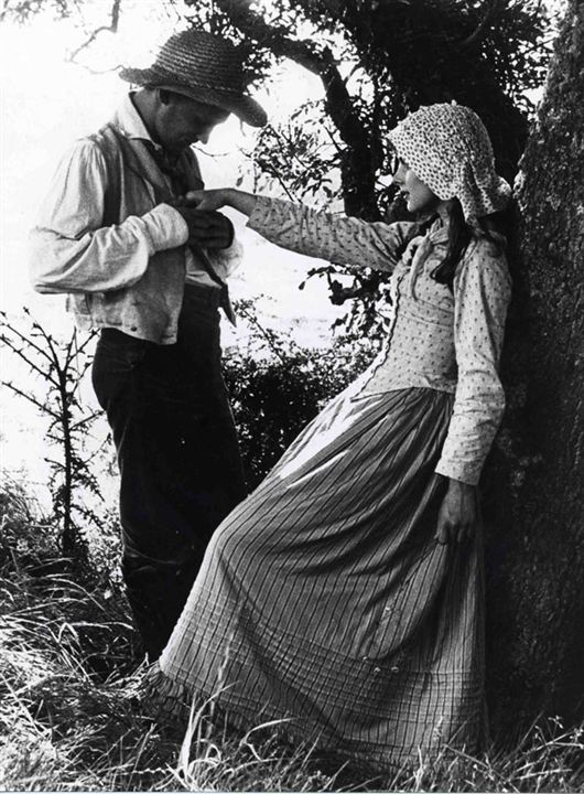 Tess : Bild Nastassja Kinski, Peter Firth