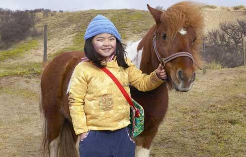 Ein Pferd für Winky : Bild Ebbie Tam, Mischa Kamp