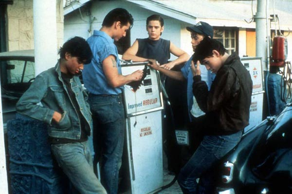 Die Outsider - Rebellen ohne Grund : Bild C. Thomas Howell, Matt Dillon, Ralph Macchio, Rob Lowe, Tom Cruise