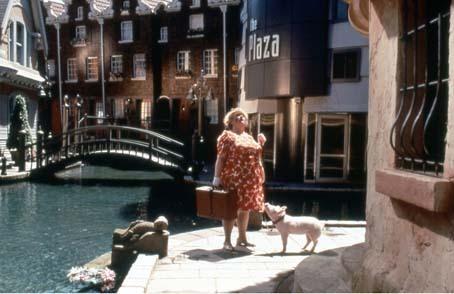 Schweinchen Babe in der großen Stadt : Bild