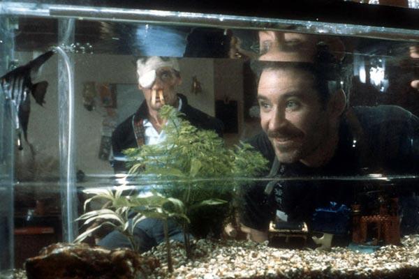 Ein Fisch namens Wanda - Film 1988 - FILMSTARTS.de