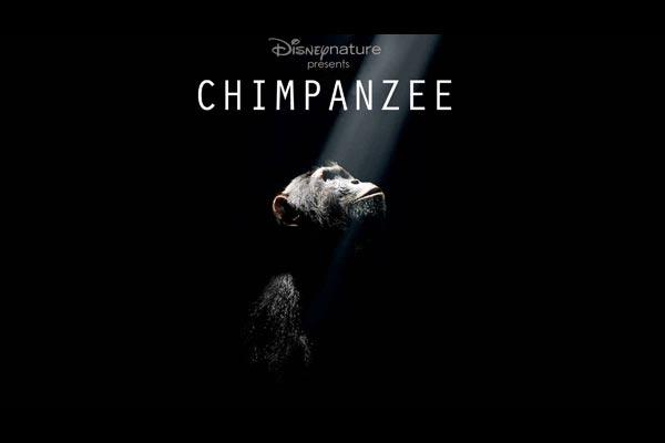 Schimpansen : Bild Alastair Fothergill, Mark Linfield