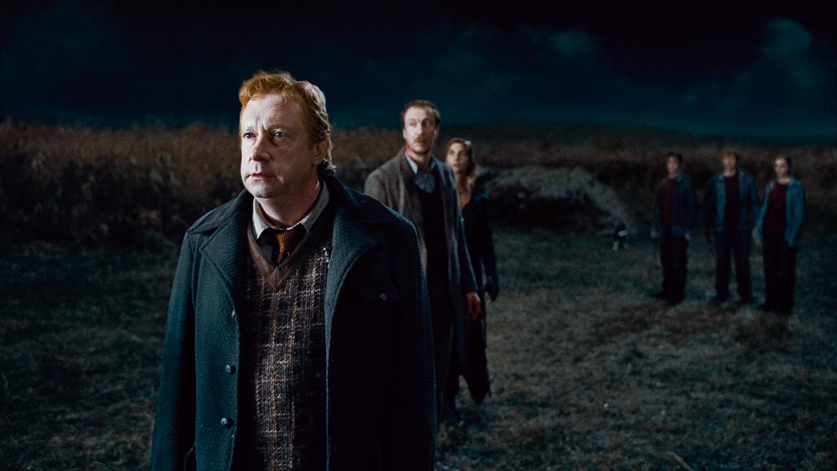 Harry Potter und die Heiligtümer des Todes - Teil 1 : Bild Mark Williams